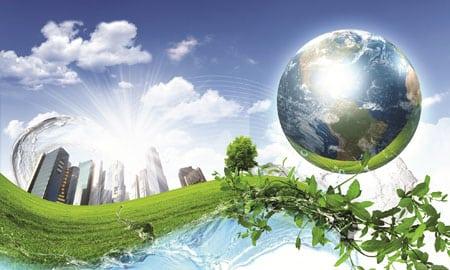 Экологическое воспитания детей