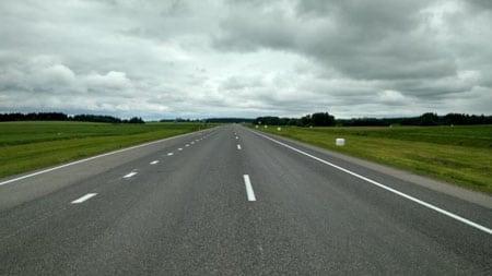 Гибель животных на дорогах: оценка воздействия автотранспорта