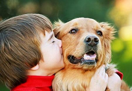 Собака и ребёнок на что обратить внимание
