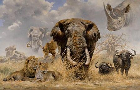 Представляют ли опасность экзотические виды домашних животных?
