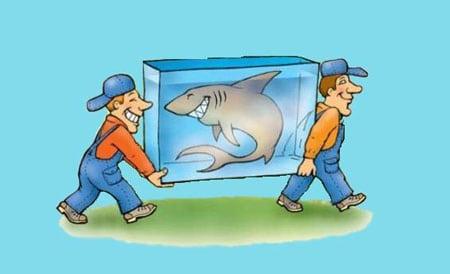 Контейнер для транспортировки рыбок