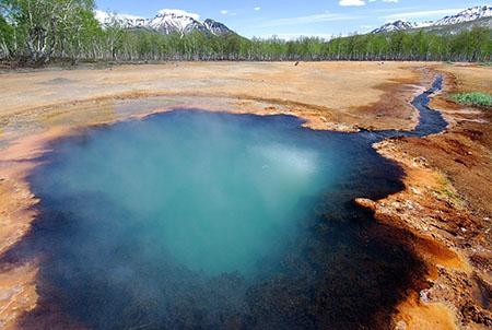 Фауна термальных источников